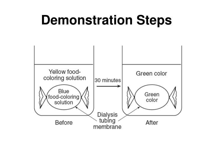 Demonstration Steps