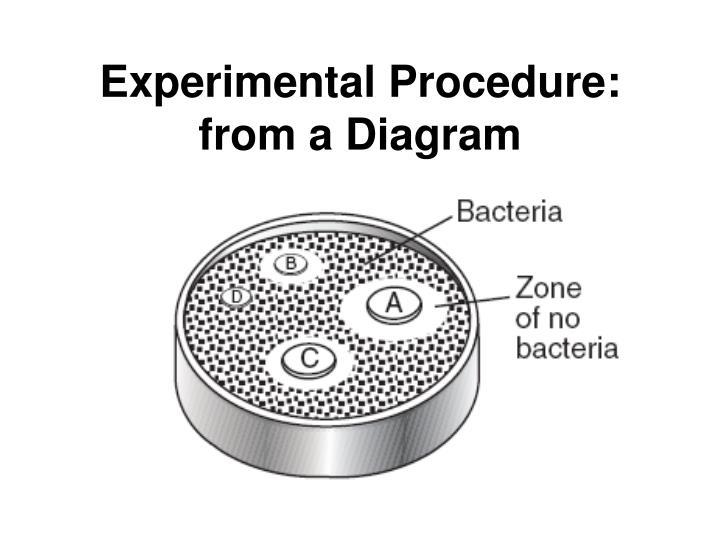 Experimental Procedure: