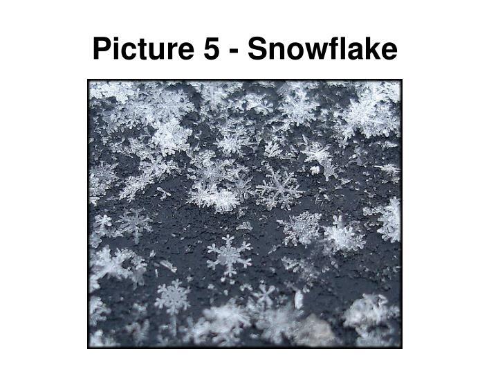 Picture 5 - Snowflake