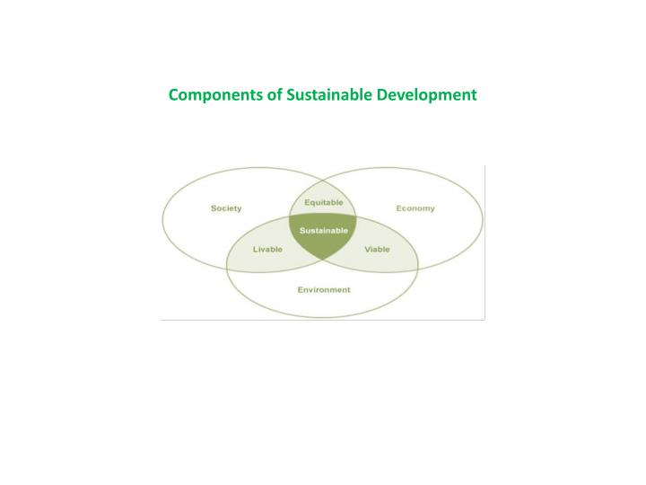 Components of sustainable development