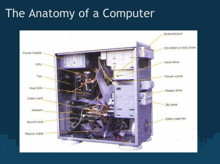 The Anatomy of a Computer
