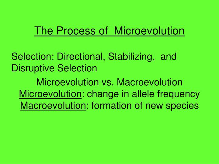 Ppt The Process Of Microevolution Powerpoint Presentation Id4247765