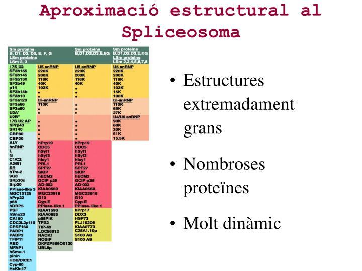 Aproximació estructural al Spliceosoma