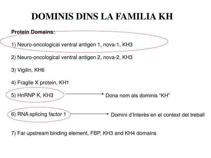DOMINIS DINS LA FAMILIA KH