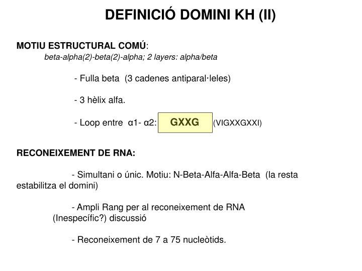 DEFINICIÓ DOMINI KH (II)
