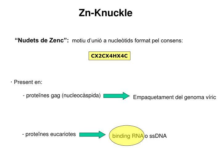 Zn-Knuckle