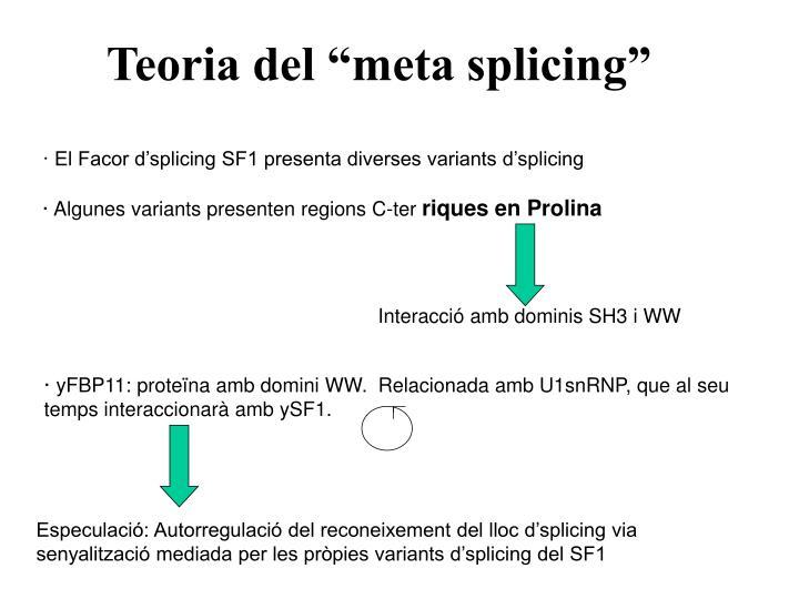 "Teoria del ""meta splicing"""
