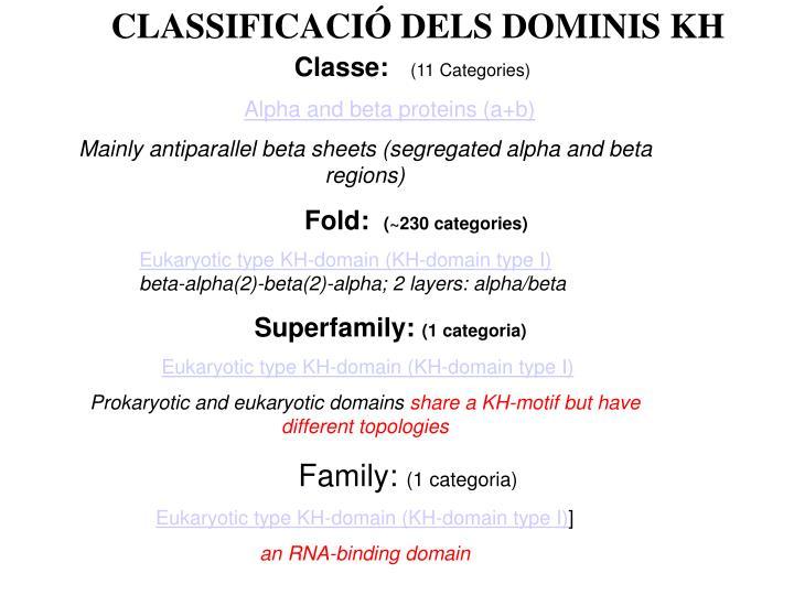 CLASSIFICACIÓ DELS DOMINIS KH