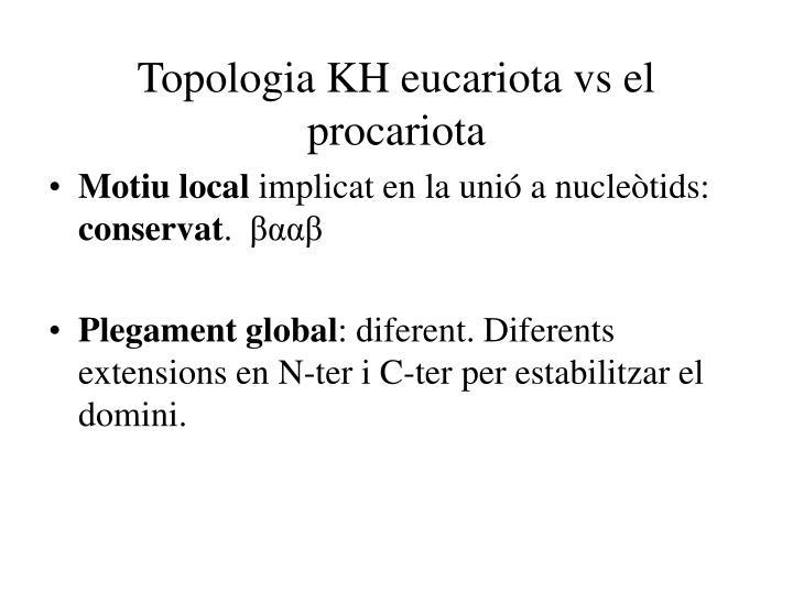 Topologia KH eucariota vs el procariota