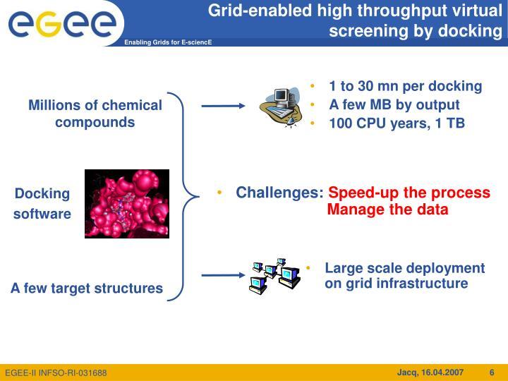 Grid-enabled high throughput virtual screening by docking