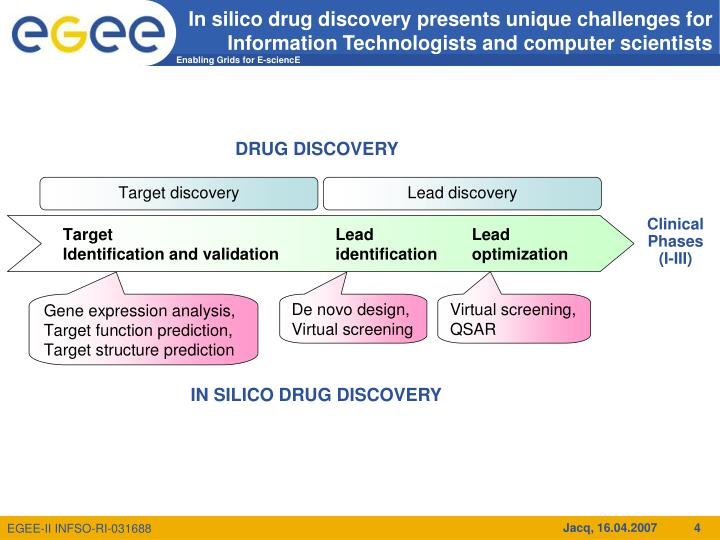 In silico drug discovery presents unique challenges for Information Technologists and computer scientists