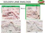 golden lane analogs