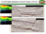 platform margin structural style