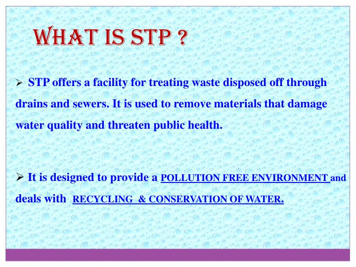 What is STP ?