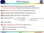bns damping