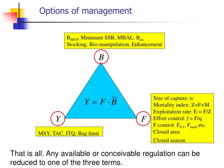 Options of management