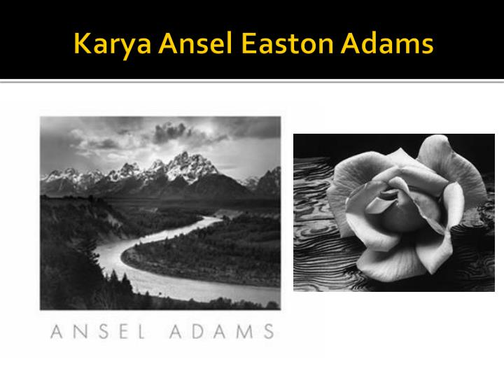 the life and career of ansel easton adams Ansel adams, a masterful photographer and a lifelong conservationist, who encouraged understanding of, and respect for, the natural environment was born ansel easton adams on february 20, 1902, in san francisco, california, near the golden gate bridge.