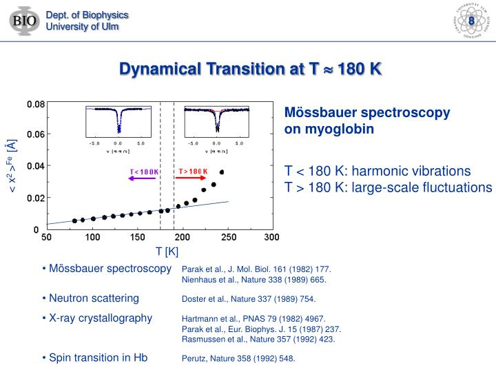 Dynamical Transition at T
