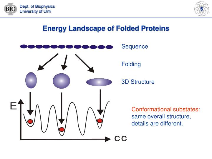Energy Landscape of Folded Proteins