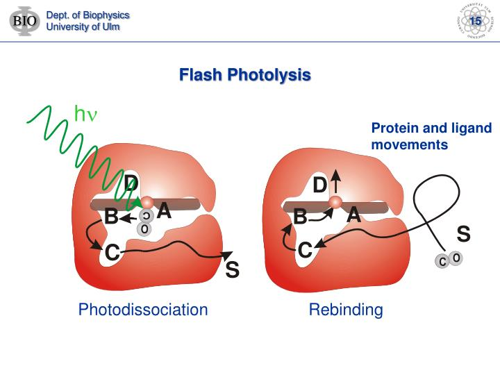 Flash Photolysis