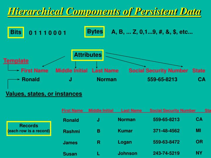 Hierarchical Components of Persistent Data