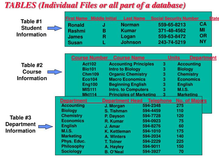 TABLES (Individual Files or all part of a database)