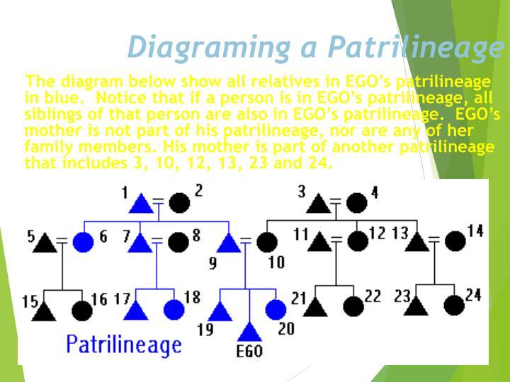 Diagraming a Patrilineage