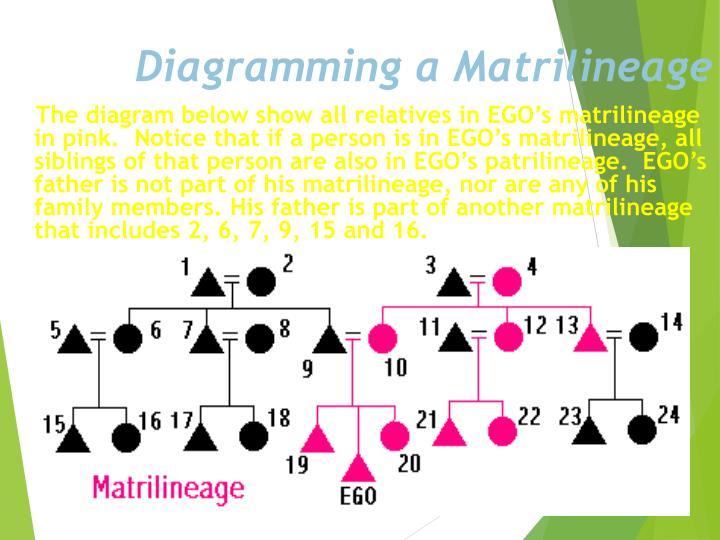 Diagramming a Matrilineage