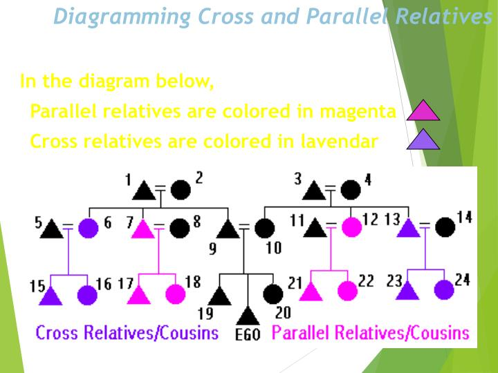 Diagramming Cross and Parallel Relatives