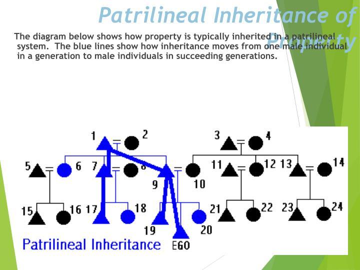 Patrilineal Inheritance of Property
