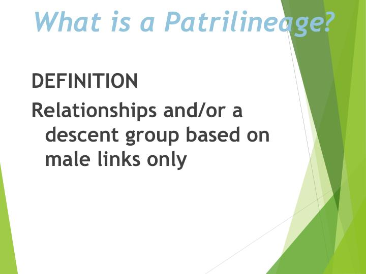 What is a Patrilineage?