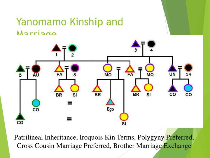 Yanomamo Kinship and Marriage