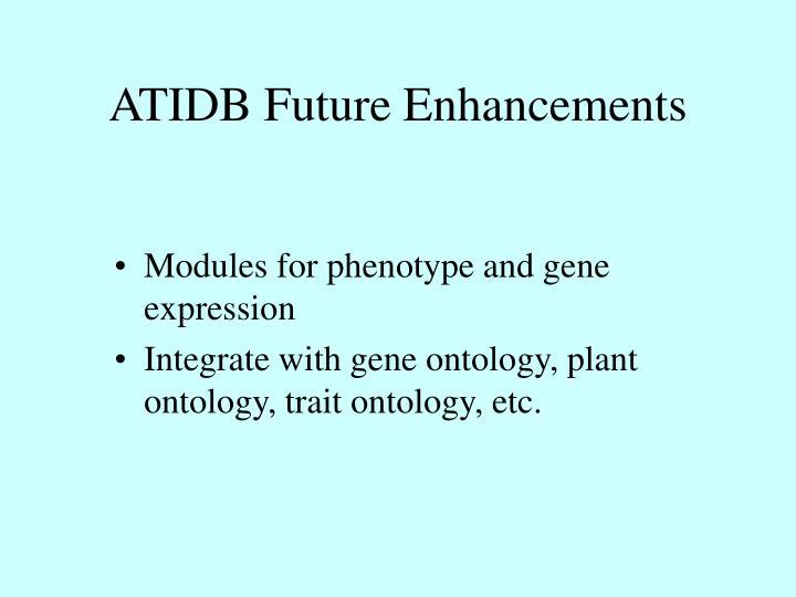 ATIDB Future Enhancements