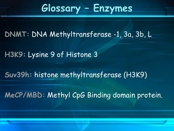 Glossary enzymes