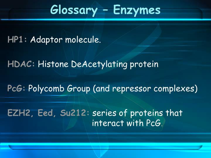 Glossary – Enzymes