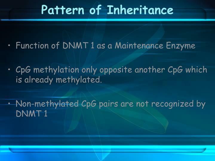 Pattern of Inheritance