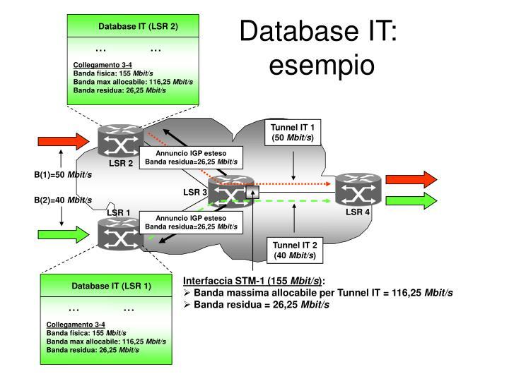 Database IT (LSR 1)