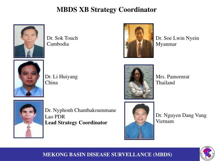 Mbds xb strategy coordinator