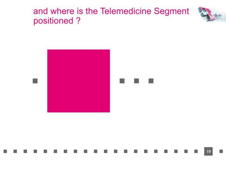 and where is the Telemedicine Segment