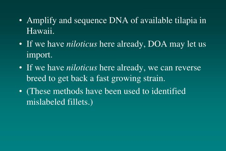 Amplify and sequence DNA of available tilapia in Hawaii.