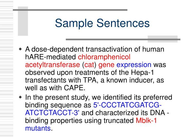 Sample Sentences