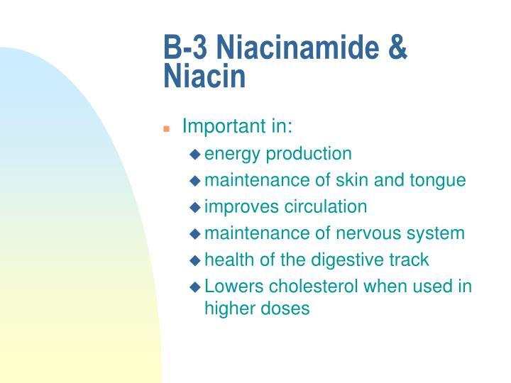 B-3 Niacinamide & Niacin