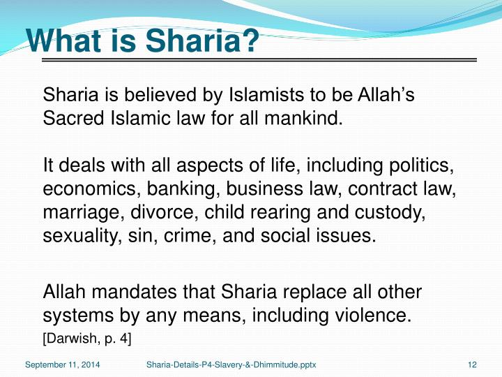 What is Sharia?