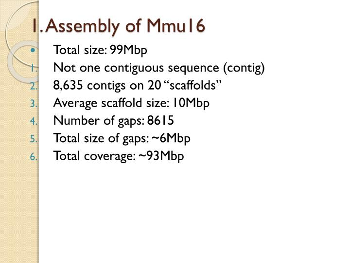 1. Assembly of Mmu16