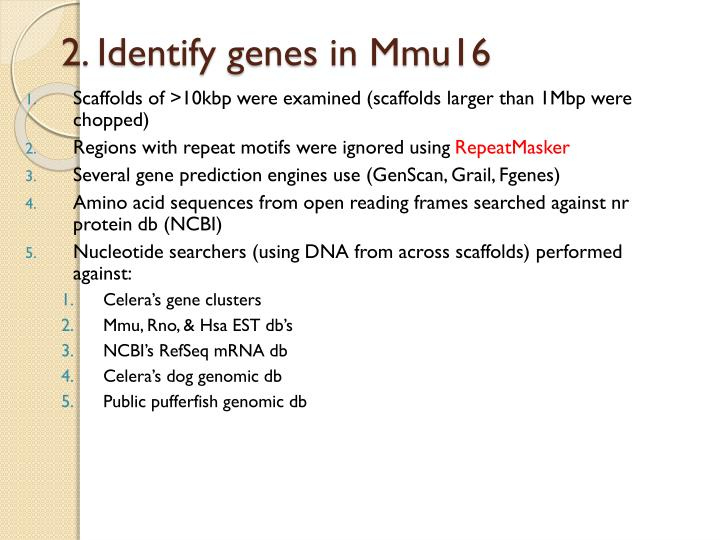 2. Identify genes in Mmu16