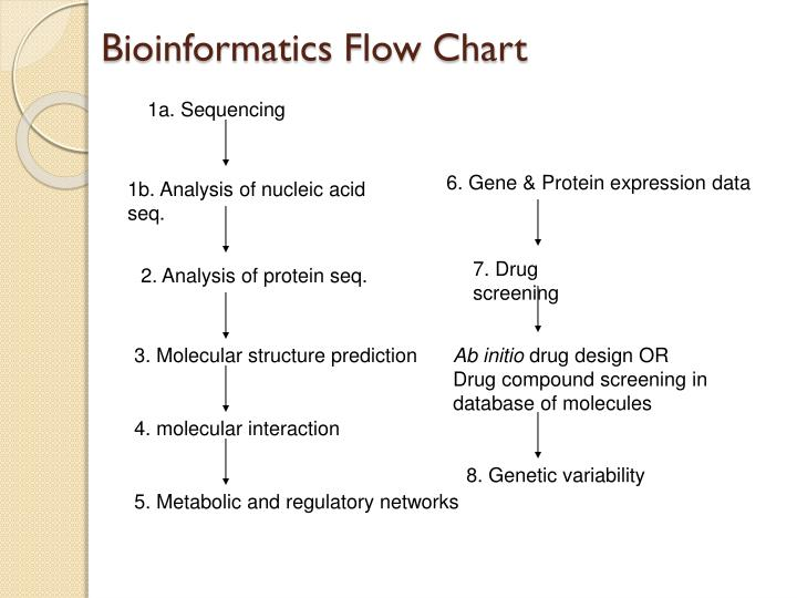 Bioinformatics Flow Chart