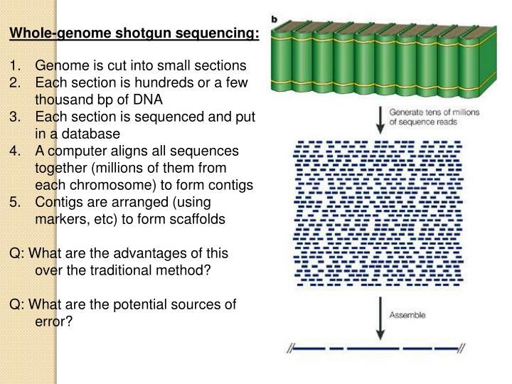 Whole-genome shotgun sequencing:
