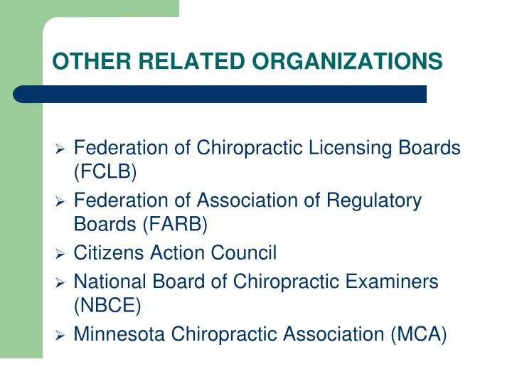 OTHER RELATED ORGANIZATIONS