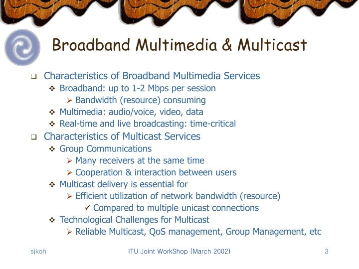 Broadband multimedia multicast
