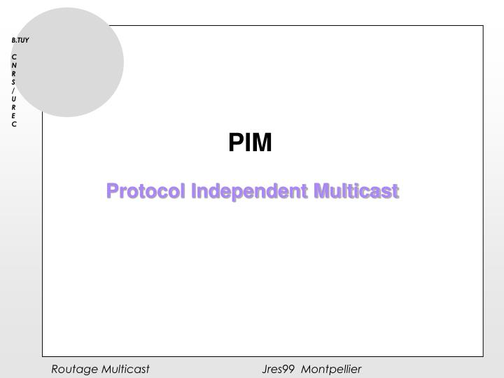 Protocol Independent Multicast